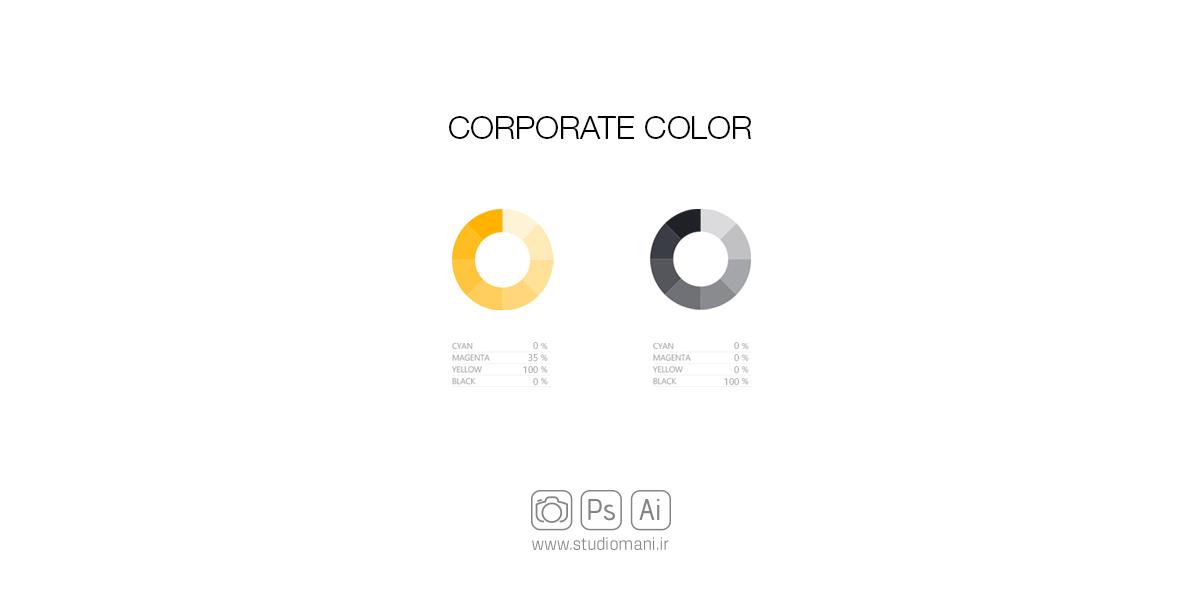 رنگ سازمانی