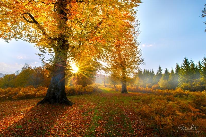 ویرایش عکسهای پاییز